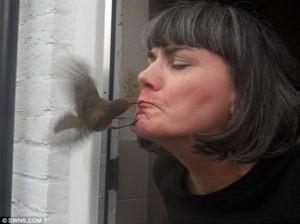 beijo de passarinho