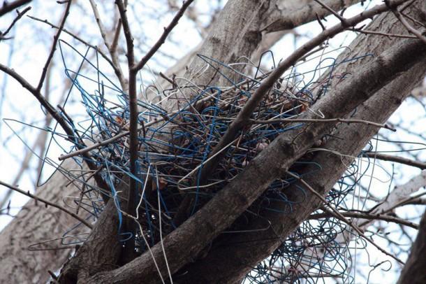 ninho de corvo com cabides Susan Fleming